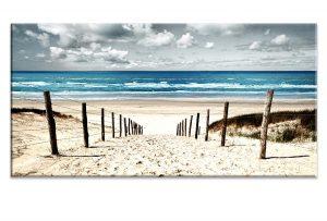 Beach | Ocean